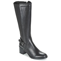 Schoenen Dames Hoge laarzen Betty London FAJIJE Zwart