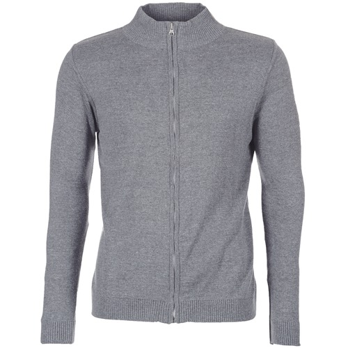 Textiel Heren Vesten / Cardigans BOTD FILAPO Grijs