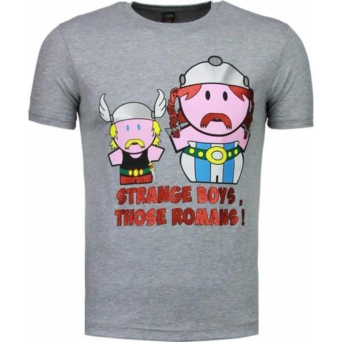 Textiel Heren T-shirts korte mouwen Local Fanatic Romans Grijs