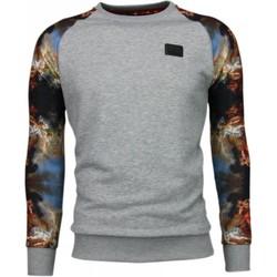 Textiel Heren Sweaters / Sweatshirts Local Fanatic Mythologie Arm Motief Grijs