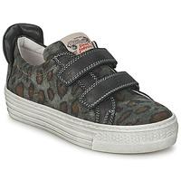 Schoenen Kinderen Lage sneakers Diesel JERMAN Grijs / Luipaard