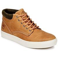 Schoenen Heren Hoge sneakers Timberland ADVENTURE 2.0 CUPSOLE CHK Bruin