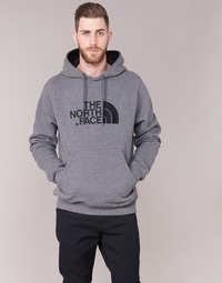 Textiel Heren Sweaters / Sweatshirts The North Face DREW PEAK PULLOVER HOODIE Grijs