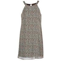 Textiel Dames Korte jurken DDP DAMERIA Multi