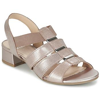 Schoenen Dames Sandalen / Open schoenen Caprice RIJOULE Roze / Metaal