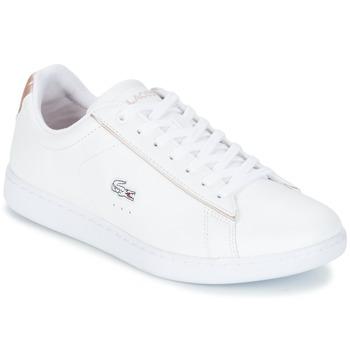 Schoenen Dames Lage sneakers Lacoste CARNABY EVO 217 2 Wit / Roze