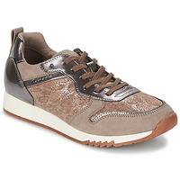 Schoenen Dames Lage sneakers Tamaris ROUFO Pepper