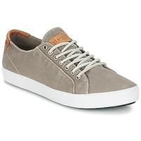 Schoenen Heren Lage sneakers Blackstone NM95 Grijs