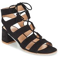 Schoenen Dames Sandalen / Open schoenen Perlato QUEZOKA Zwart