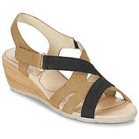 Schoenen Dames Sandalen / Open schoenen Rondinaud COLAGNE Beige / Zwart