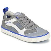 Schoenen Jongens Lage sneakers Geox J KIWI B. J Grijs
