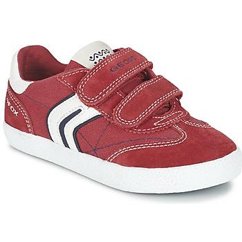 Schoenen Jongens Lage sneakers Geox J KIWI B. M Rood / Marine