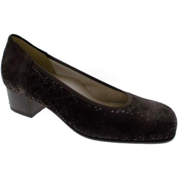 Schoenen Dames pumps Calzaturificio Loren LOP5414ma marrone