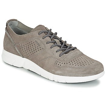 Schoenen Heren Lage sneakers Geox BRATTLEY A Grijs