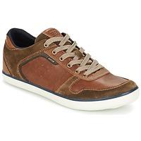 Schoenen Heren Lage sneakers Geox BOX C Bruin