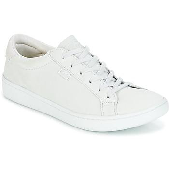 Schoenen Dames Lage sneakers Keds ACE MONO Grijs