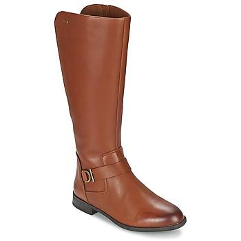 Schoenen Dames Hoge laarzen Clarks MINT TREAT GTX Bruin
