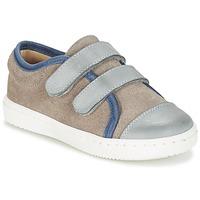 Schoenen Jongens Lage sneakers Citrouille et Compagnie GOUTOU Grijs / Taupe / Blauw