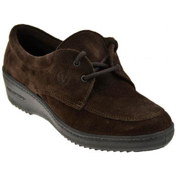 Schoenen Dames Mocassins Valleverde  Bruin
