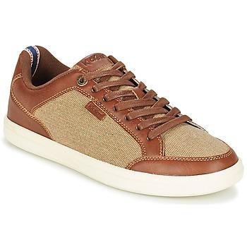 Schoenen Heren Lage sneakers Kickers AART HEMP Bruin / Beige