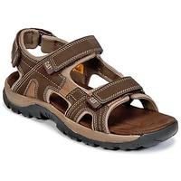 Schoenen Heren Sandalen / Open schoenen Caterpillar GILES Bruin