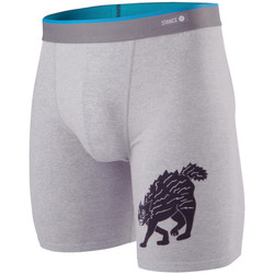 Textiel Heren Boxershorts Stance Essentials Whiskey Cat Grijs