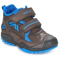 Schoenen Jongens Lage sneakers Geox J N.SAVAGE B.B Bruin / Blauw