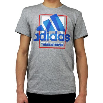 Textiel Heren T-shirts & Polo's adidas Originals Country Logo Tshirt AI6035 Grey