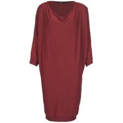 Textiel Dames Korte jurken Kookaï BLANDI Bordeau
