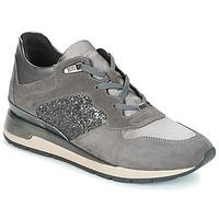 Schoenen Dames Lage sneakers Geox D SHAHIRA Grijs