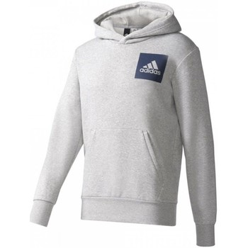 Textiel Heren Truien adidas Originals Essentials Chest Logo Pullover Hood Fleece M Grijs