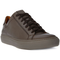Schoenen Heren Lage sneakers Lion WEST 311 Marrone