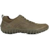 Schoenen Heren Sneakers Caterpillar Arise