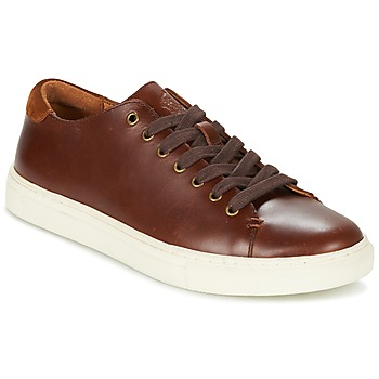 Schoenen Heren Lage sneakers Ralph Lauren JERMAIN Bruin