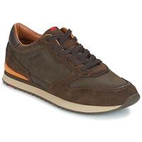 Schoenen Heren Lage sneakers Lloyd EDWIN Bruin