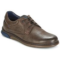 Schoenen Heren Lage sneakers Fluchos BEAR Bruin