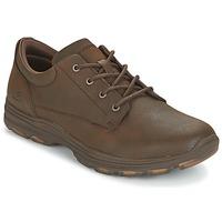 Schoenen Heren Lage sneakers Skechers MENS USA Bruin