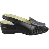Schoenen Dames Sandalen / Open schoenen Dtorres ROCIO NEGRO