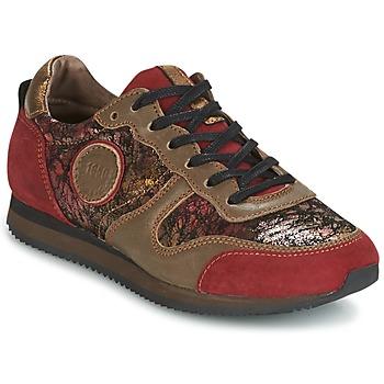 Schoenen Dames Lage sneakers Pataugas IDOL Rood / Bruin