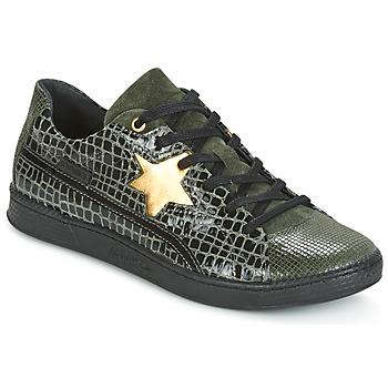 Schoenen Dames Lage sneakers Pataugas JOIA Groen / Grijs
