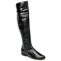 Schoenen Dames Lieslaarzen So Size HOLA Zwart