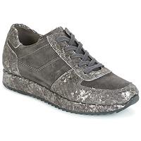 Schoenen Dames Lage sneakers Perlato TINA Grijs