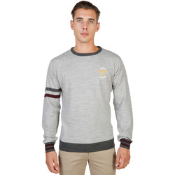 Textiel Heren Truien Oxford University Sweaters Grijs