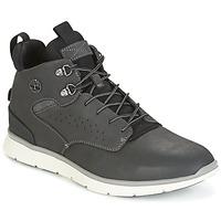 Schoenen Heren Hoge sneakers Timberland KILLINGTON HIKER CHUKKA Grijs