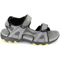 Schoenen Heren Sandalen / Open schoenen Elementerre Calcha Gris Jaune Grijs
