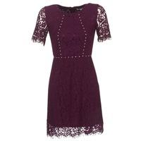 Textiel Dames Korte jurken Morgan ROUJEL Bordeau