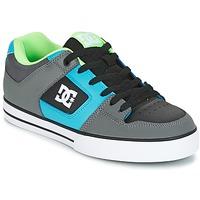 Schoenen Heren Skateschoenen DC Shoes PURE Grijs / Groen / Blauw