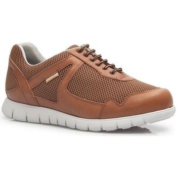 Schoenen Heren Lage sneakers Calzamedi SPORTS CORD CUERO
