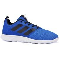 Schoenen Heren Lage sneakers adidas Originals Ace 174 TR Blauw