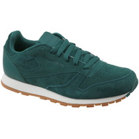 Schoenen Kinderen Lage sneakers Reebok Sport CL Leather SG Vert
